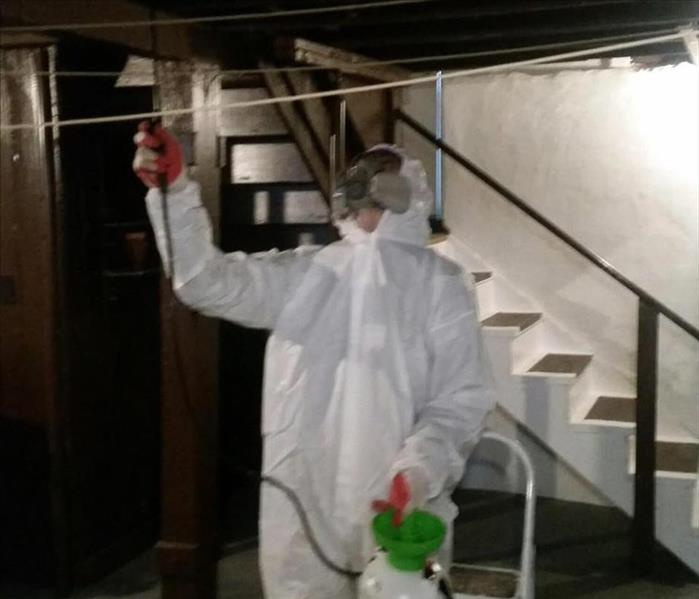 Mold Remediation in Kingston Home
