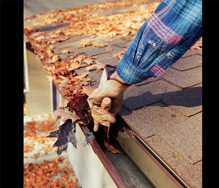 General Cleaning Out Your Forty Fort Gutters This Fall