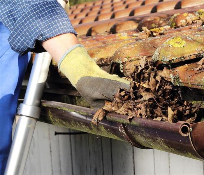 General Wilkes-Barre Residents - Don't Forget to Clean your Gutters this Fall