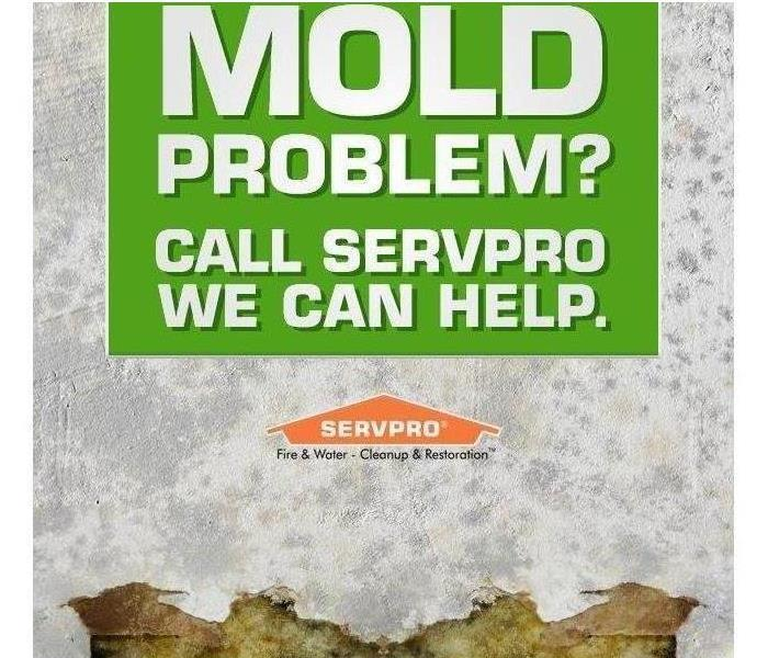 "Cartoon white wall  with mold and text that reads ""Mold Problem? Call SERVPRO. We can help."""